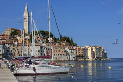 Rovinj - Istrian Peninsula - Croatia. The city of Ravinj on the Istrian Peninsula in Croatia. The town is also know by its Italian name of Rovigno stock images