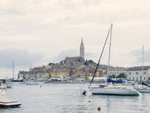 Rovinj Marina and the Old Town with Basilica of St. Euphemia at the top 0939 Stock Photography