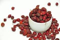 Rovo rosso in tazza Fotografia Stock