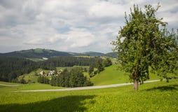 Rovtedorp, Slovenië stock afbeelding