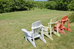 Row of Adirondack Chairs in a Vineyard Royalty Free Stock Photos