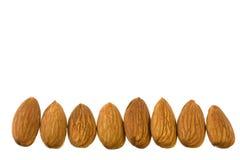 Row of almonds Royalty Free Stock Photo