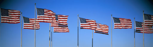 Row of American flags Stock Photography