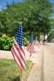 American flags displayed on the side of the street Royalty Free Stock Images