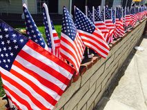 Row of American flags Royalty Free Stock Photo