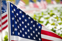 Row of American flags on street side Royalty Free Stock Images