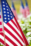 Row of American flags on street side Stock Photos