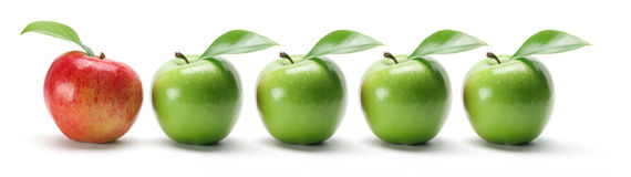 Row of Apples royalty free stock photo