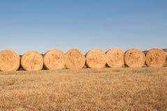 Row of bales of hay Royalty Free Stock Photos