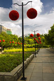 A row of ball-flower with  blue sky in a wedding banquet. Guangzhou,in a park,a row of ball-flower with blue sky in a wedding banquet Stock Photos