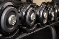 Row of barbells. Row of black barbells in the rack, ready for workout Stock Images