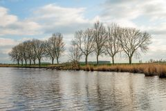 Row of bare trees next to the water Stock Photos