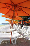 Row of beach umbrellas Royalty Free Stock Photo