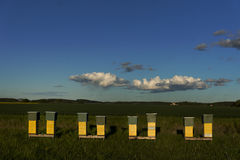 Row of beehives Royalty Free Stock Photos