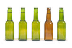 Row of several beer bottles isolated on white background Royalty Free Stock Photos