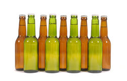 Row of green and brown lager beer bottles isolated on white background Stock Image