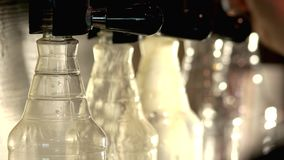 Row of beer taps pouring bottles. Barman turning on beer taps stock video