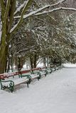 Row of benches covered with snow under trees. Winter snowy park with benches. Frozen alley in park. Benches in snow. Row of benches covered with snow under royalty free stock photo