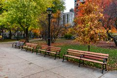 Row of Benches at Washington Square Park in Chicago during Autumn. A row of empty benches at Washington Square Park in Chicago with colorful trees during autumn royalty free stock images