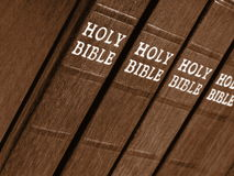 A Row of Bibles Stock Photo