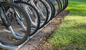 Row of bicycle tires Royalty Free Stock Image