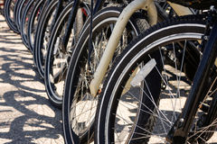 Row of Bicycle Tires Royalty Free Stock Photo