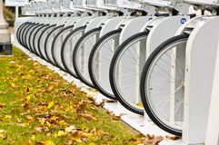 Row of Bicycle Wheels Stock Images