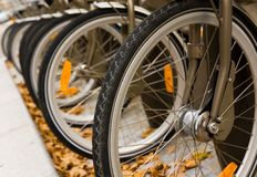 Row of bicycles Royalty Free Stock Image