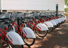 Row of bicycles for hire Royalty Free Stock Photo