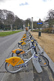 Row of bicycles for rent Royalty Free Stock Image