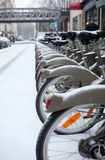 Row of bicycles for rent covered with snow Royalty Free Stock Photos