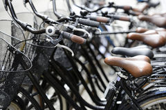 Row of bicycles on the street Royalty Free Stock Image
