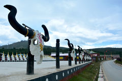 Row of big hornes and skulls of yaks along the road in Shangri-La Royalty Free Stock Photography