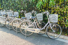 Row of bikes parking . Stock Photography