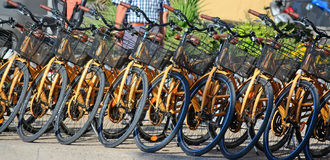 Row of bikes in a rental agency Stock Images