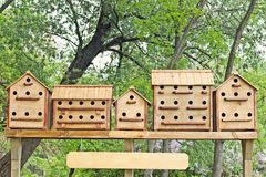 Row of birdhouses Royalty Free Stock Photography