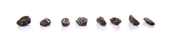 Row Of Black Raisin VII Royalty Free Stock Photography