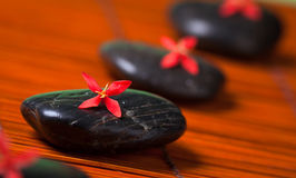 Row of black rocks with red flowers Royalty Free Stock Photos
