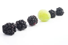The row with blackberries and a grape Royalty Free Stock Images