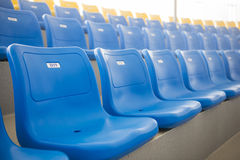Row of blue plastic chairs on the stadium Stock Image