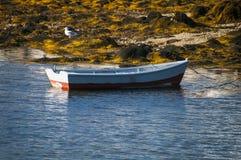 Row Boat Royalty Free Stock Photo