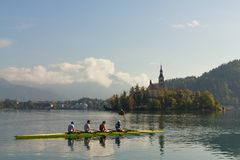 Row boat practicing at lake Bled. Early morning, Slovenia Stock Photos