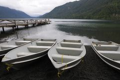 Row Boats at dock Stock Images