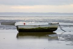 Row boats in early morning Royalty Free Stock Photos