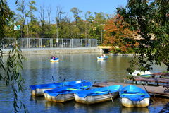 Free Row Boats In Public Park Royalty Free Stock Photography - 51554607