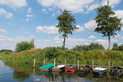 Row boats in river Royalty Free Stock Photography