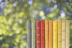 Row of books w. nature background Stock Photo