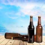 Row of bottles of beer, close-up view Royalty Free Stock Photos