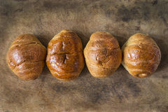 Row of Breads on Wooden in Horizontal View. Royalty Free Stock Image