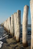 Breakwaters in the North Sea, Cadzand Bad, Holland. Row breakwaters on the North Sea beach, Cadzand Bad, The Netherlands. Sunny day and blue sky royalty free stock photo